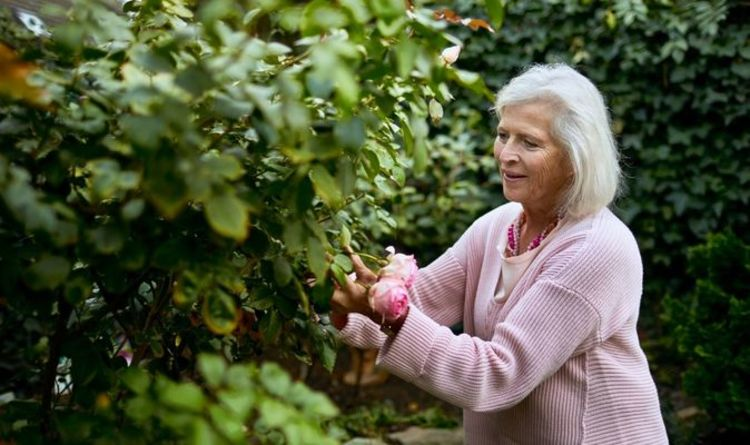 State Pension UK: Women may have been short-changed thousands per year – are you affected?