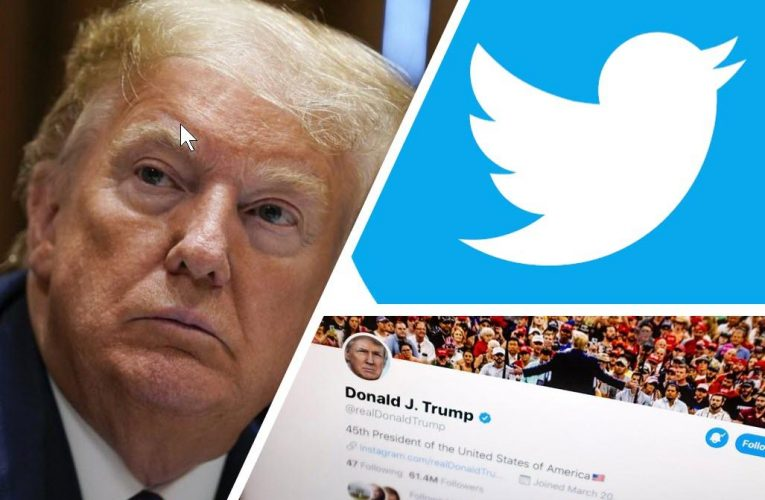 Twitter 'came up with a separate set of rules' for Trump
