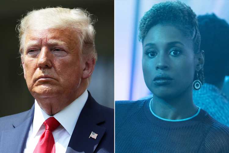 Donald Trump's Only 'Like' on Twitter Is About … HBO's Insecure — and Star Issa Rae Reacts