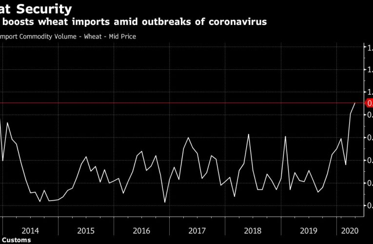 China's Wheat Imports Surge to Seven-Year High Amid Food Concern
