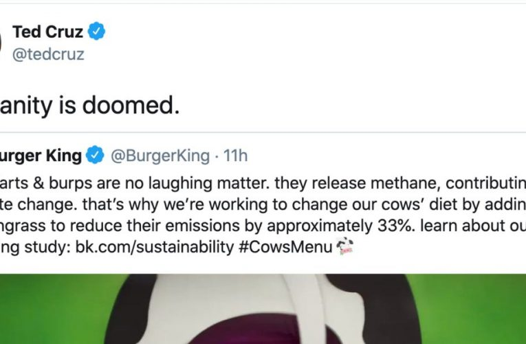 Ted Cruz says 'humanity is doomed' in response to Burger King's new, more sustainable Whopper made with cows that fart and burp less