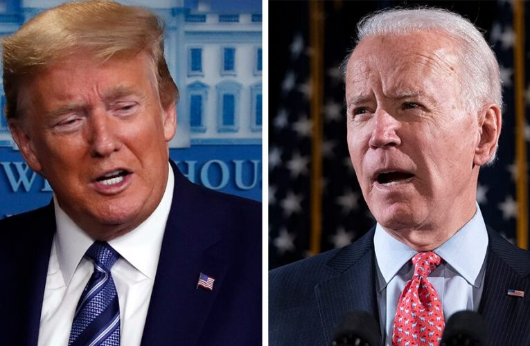 Adriana Cohen: 2020 presidential election poses clear choice: jobs or mobs