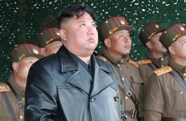 North Korea's leader is tapping his own private food reserve to feed the country, and it could be a worrying sign