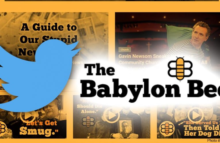 The Babylon Bee stings Twitter CEO after account was briefly suspended