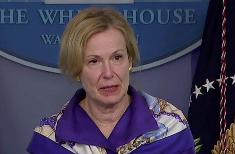Pelosi announces she has 'no confidence' in top White House coronavirus adviser Deborah Birx