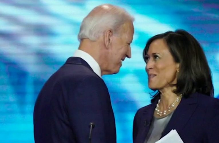 Kamala Harris checks the boxes for Biden, but does she help the ticket?