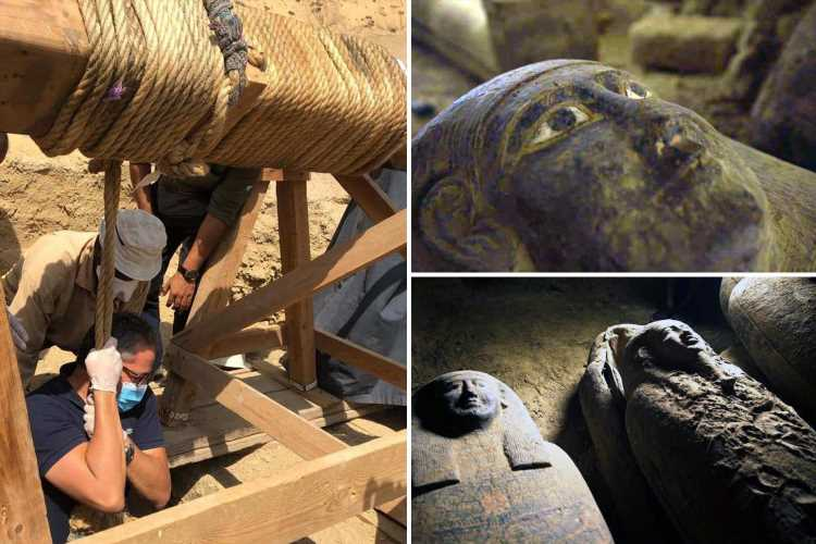 'Cursed' Ancient Egyptian burial shaft with 13 completely sealed coffins found after 2,500 years