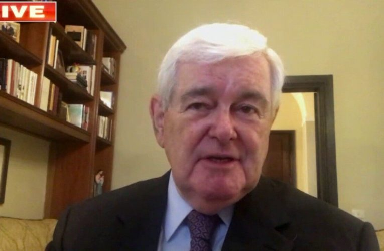 Gingrich: Dems' Supreme Court battle response makes 'two big gambles'
