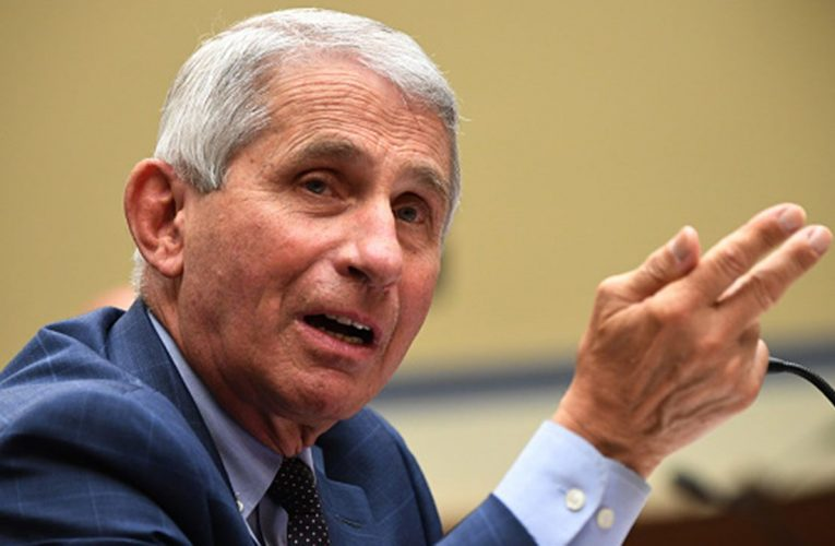 Anthony Fauci anticipates 'safe and effective' coronavirus vaccine will be developed by end of the year