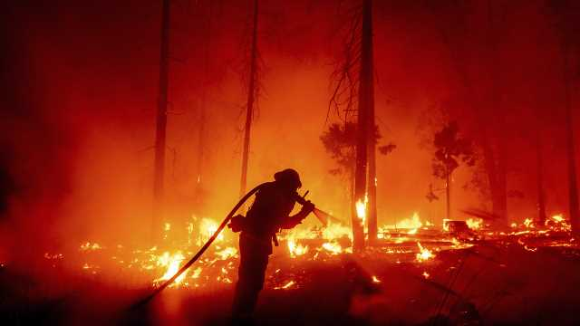 Rep. Bruce Westerman wildfires ravage the US every year. They don't have to