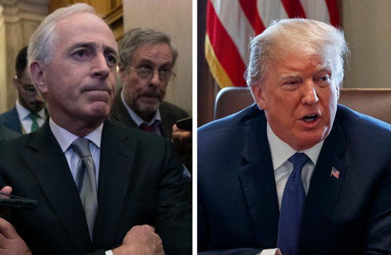 Former GOP Sen. Corker slams Trump legal challenges, calls on Republicans to 'challenge demagoguery'