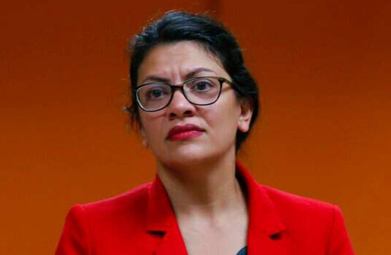 Rashida Tlaib rejects claims that progressive tactics hurt Dems: 'Embrace the base'