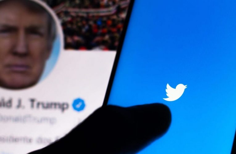 A Twitter user fooled Trump by setting up fake accounts and raising $7,384 for the non-existent 'Gay Voices for Trump' organization