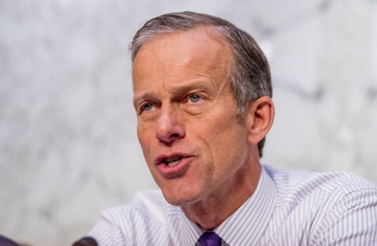 'In the Senate, it would go down like a shot dog,' Senate Majority Whip John Thune says of House GOP attempts to overturn the election