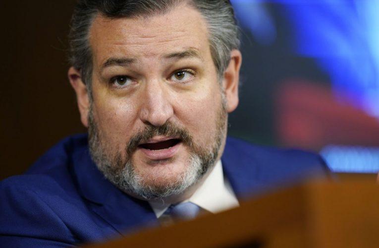 Cruz Set to Lead Group of GOP Senators in Opposing Certification