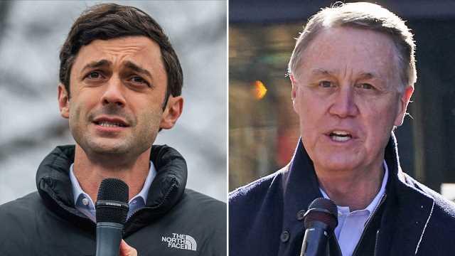 Georgia Senate runoffs: What's left to count
