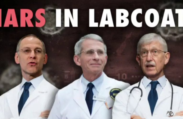 Ingraham slams public health officials over changing COVID message: 'Liars in lab coats'