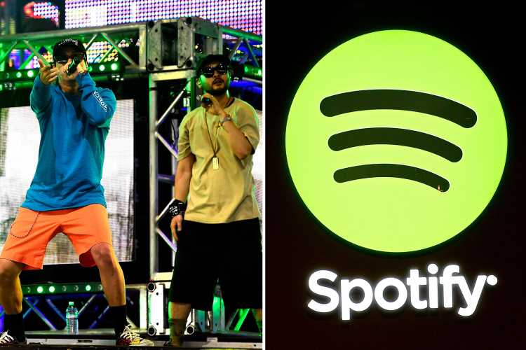 Spotify removes HUNDREDS of K-pop songs over rights row – including Epik High and IU
