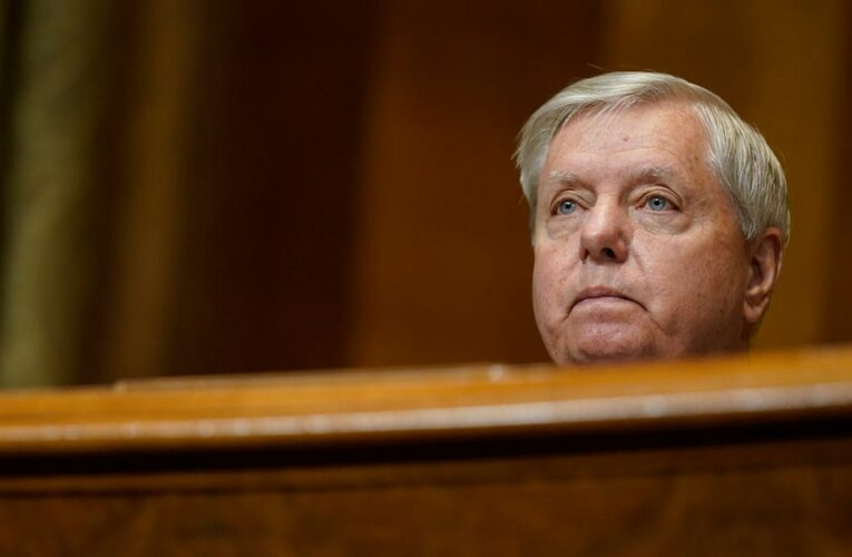 Lindsey Graham slams Biden as 'a very destabilizing president' who wants to 'regulate America out of business'