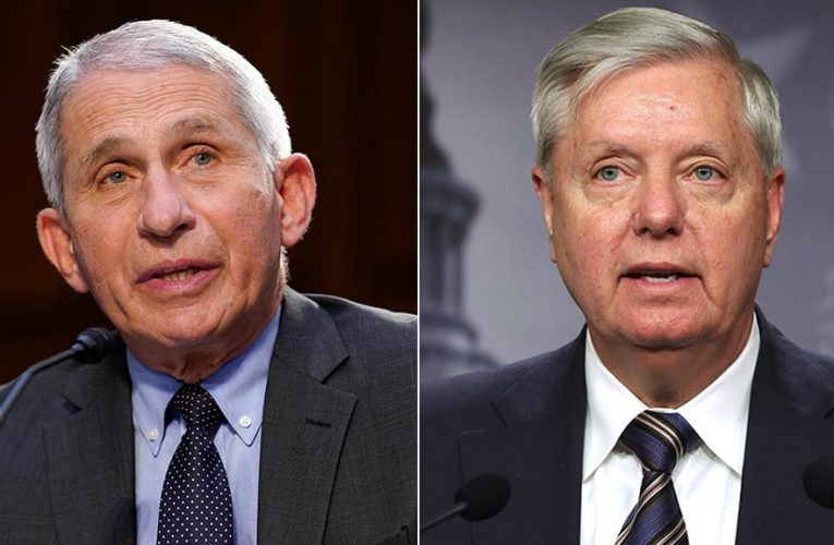 Lindsey Graham tells Fauci to go to border and see 'biggest super spreader event in the nation'