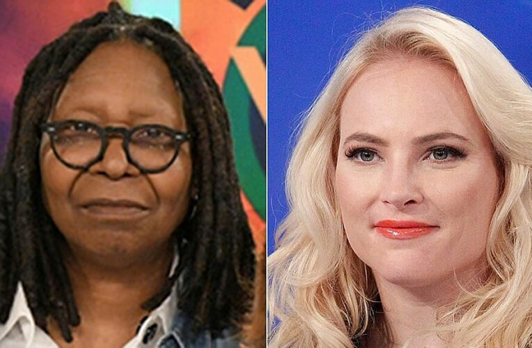 'The View' derails into awkward silence as McCain clashes with Whoopi over Georgia voting law