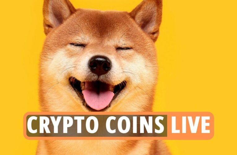 Bitcoin latest – Shiba Inu, Dogecoin and Ethereum cryptocurrency prices soar as new Coinbase rival Block.One emerges
