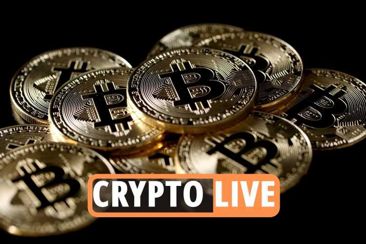 Bitcoin latest news LIVE  – Elon Musk backs cryptocurrency AGAIN as market price crash triggers frantic stock sell-off