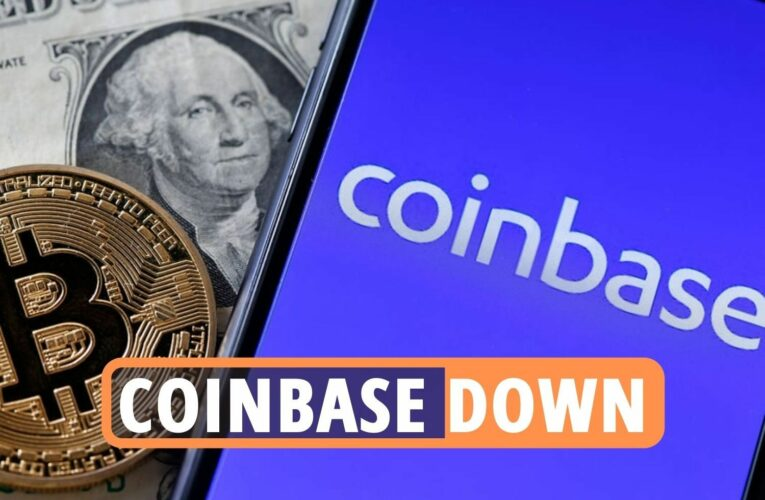 Bitcoin price latest – Cryptocurrency markets plunge 30%, Coinbase down and new StopElon coin to limit Elon Musk's power