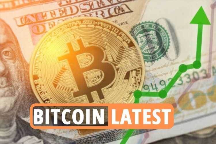 Bitcoin news LIVE – Cryptocurrency market SURGES with BTC, Ethereum, Cardano, Dogecoin price 'looking bullish'