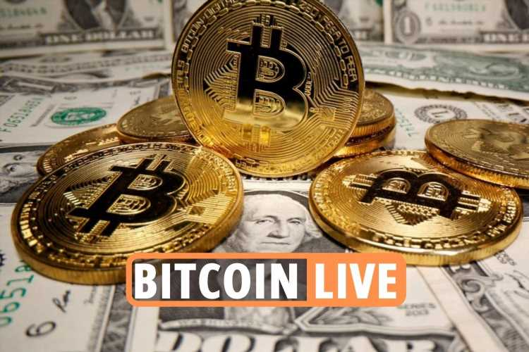 Bitcoin price LIVE – Ethereum and Dogecoin values surge as crypto market dramatically recovers