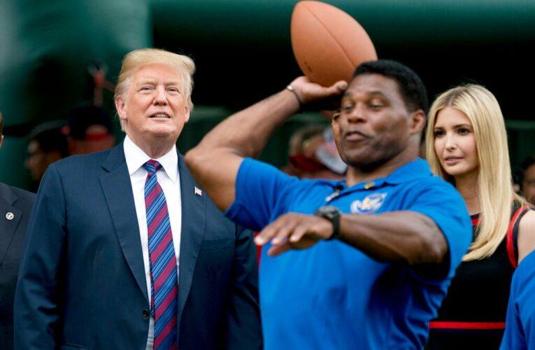 "Donald Trump Declares Heisman Winner Herschel Walker ""Going To"" Run For Georgia Senate Seat Next Year"