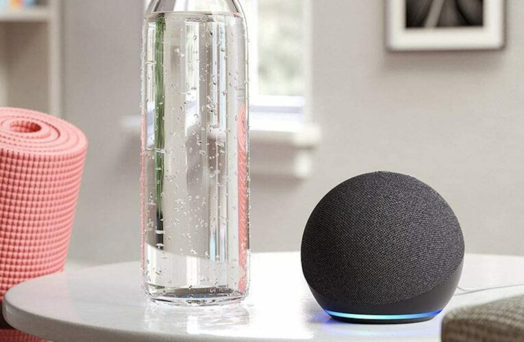 The Echo Dot is one of our favorite smart speakers—and it's less than $20