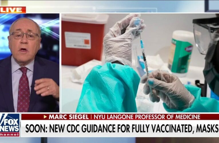 DeSantis blasts CDC for K-12 mask recommendation: 'It isn't based in science'