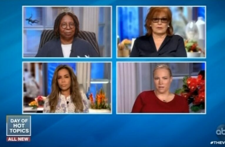 Meghan McCain to quit 'The View'
