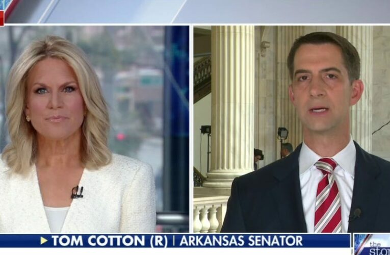 Sen. Tom Cotton: Americans do not believe that some races are inherently oppressive