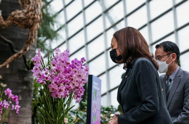 Harris holds steady on Southeast Asia trip as crises loom