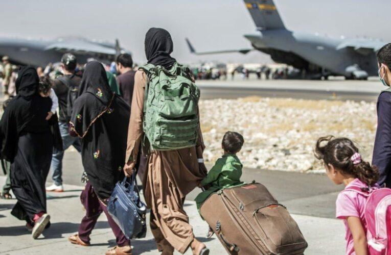 Kamala Harris says evacuating Americans, Afghan allies is Biden admin's 'highest priority'
