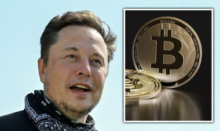 Elon Musk humiliated as Bitcoin soars in value after Tesla chief writes off cryptocurrency