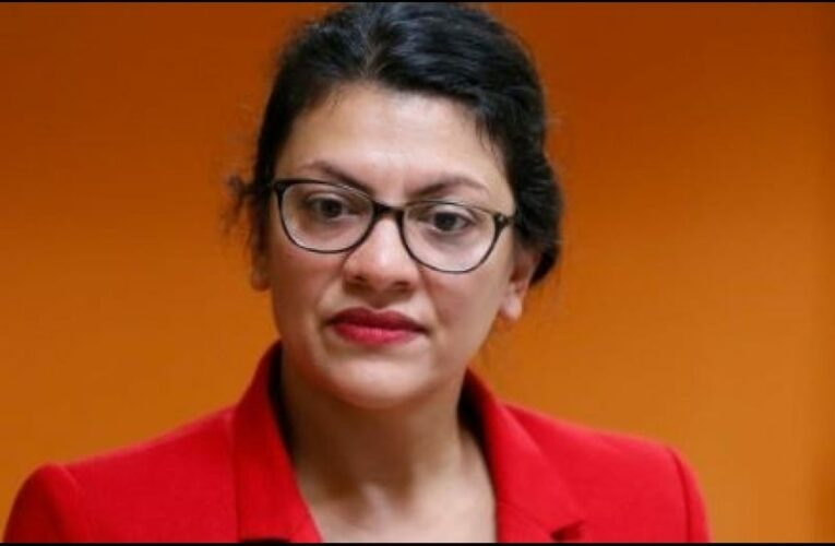 Rashida Tlaib says she's only wearing a mask because of a 'Republican tracker' near her