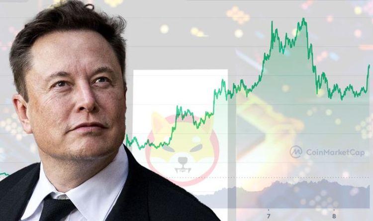 Shiba Inu price prediction: Crypto needs to TRIPLE surge rate to hit $1 – Expert analysis
